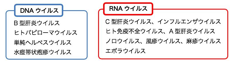 抗ウイルス薬 - yakugaku lab